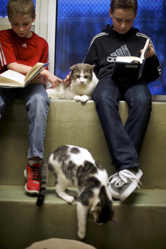 Сэмюэл Трего и Бен Спири читают Стюарту